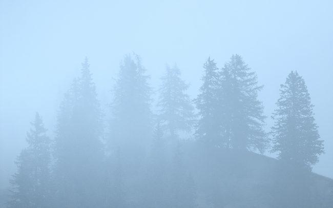 Prírodná rezervácia Combe de l'A, Švajčiarsko